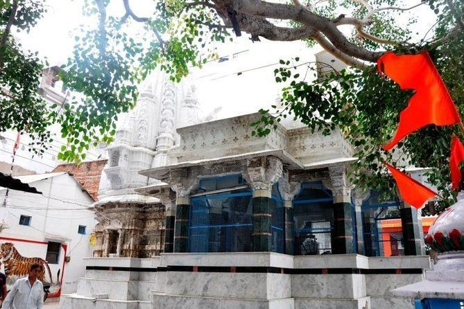 Living Heritage Walk along with Half Day City