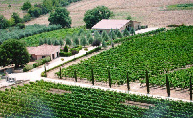 Villa Corano Winery Tour in Tuscany