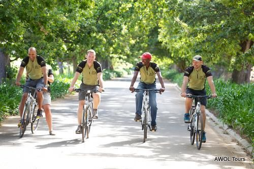 Winelands Constantia Cycling Tour