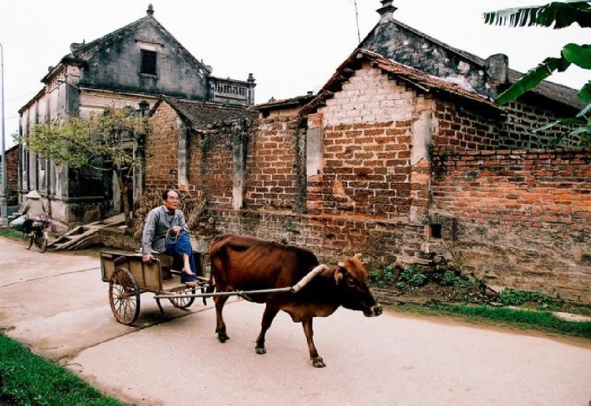 Duong Lam Ancient Village Tour from Hanoi with Vietnamese Lunch