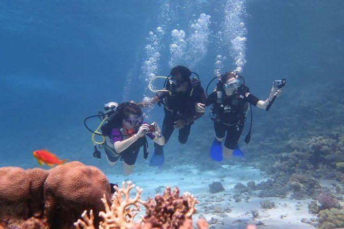 Intro Diving In Sharm El Sheikh