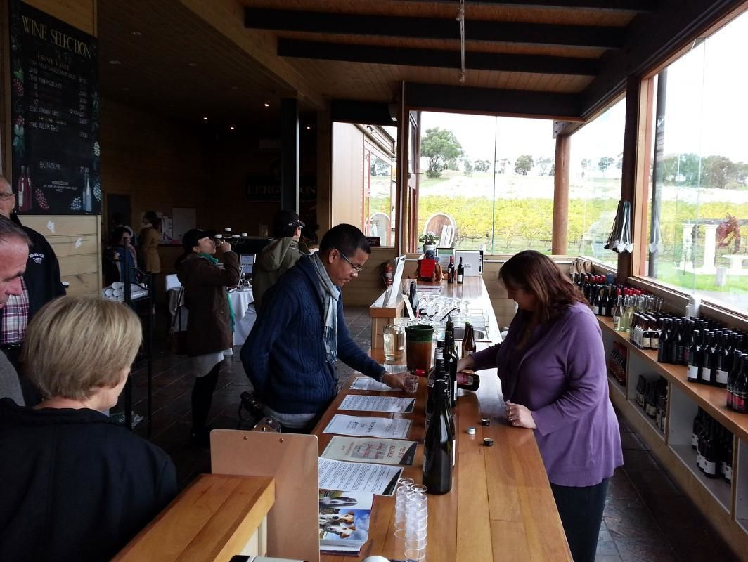 Blue Dandenongs, Wildlife Encounters and Wine Tasting Tour from Melbourne