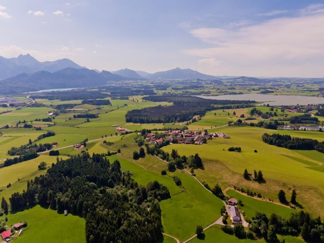 Neuschwanstein Castle Tour from Munich with Private Transfer and Entrance Ticket