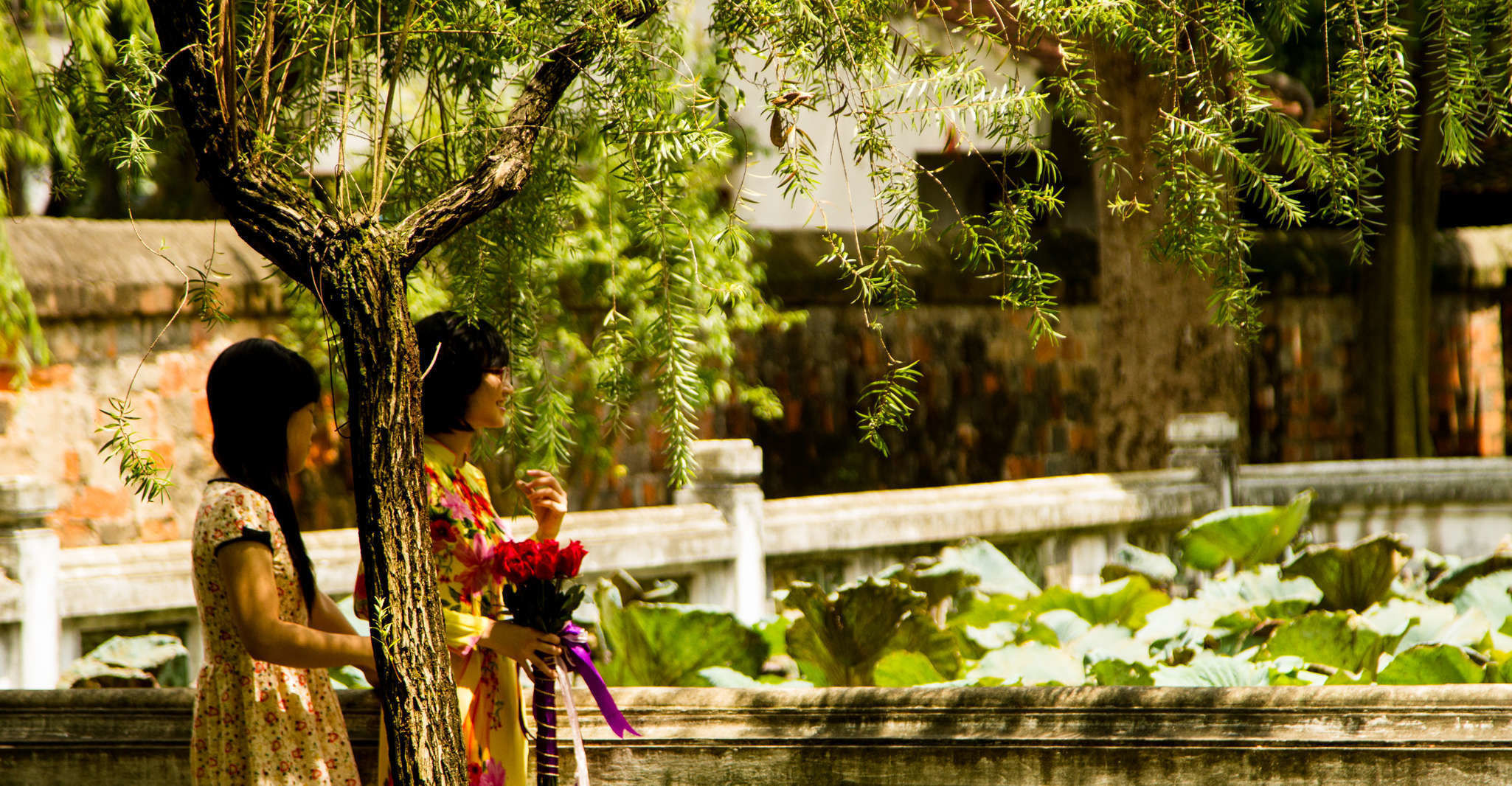Hanoi City: Full-day Charming Cultural Tour