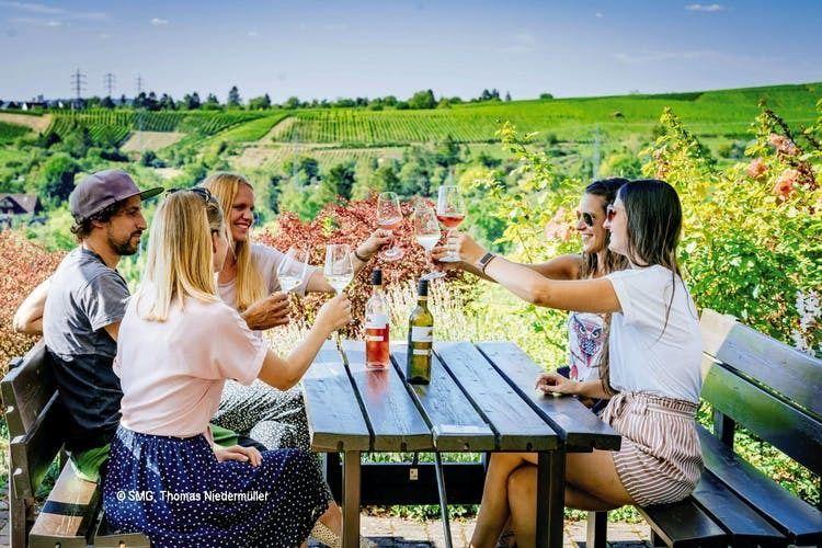 24-hour Stuttgart hop-on hop-off bus winetour