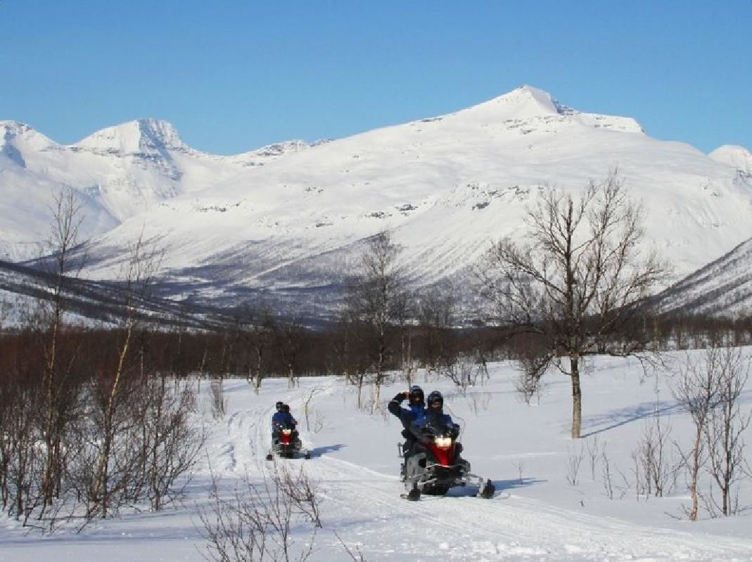 Snowmobile Ride and Wild Reindeer Spotting Day Trip from Tromso