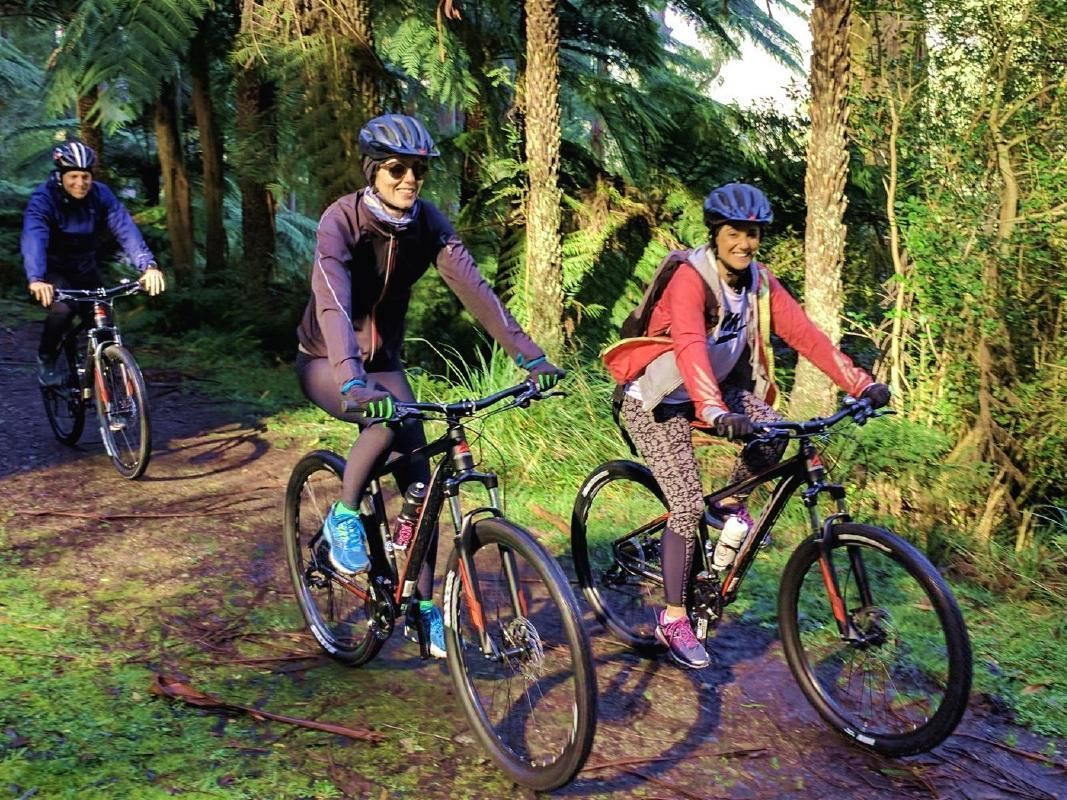 Yarra Valley Hike and Bike Tour from Melbourne with Optional Winery Visit