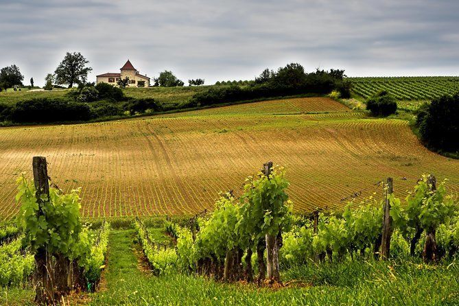 Small Group Guided Bordeaux and Medieval St Emilion with Wine tastings