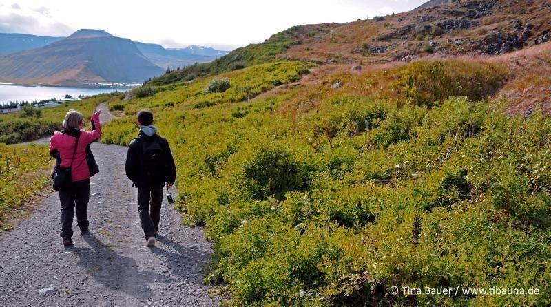Hiking Tour Ísafjörður: Geology