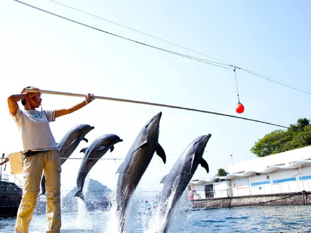 Mito Sea Paradise Admission Ticket