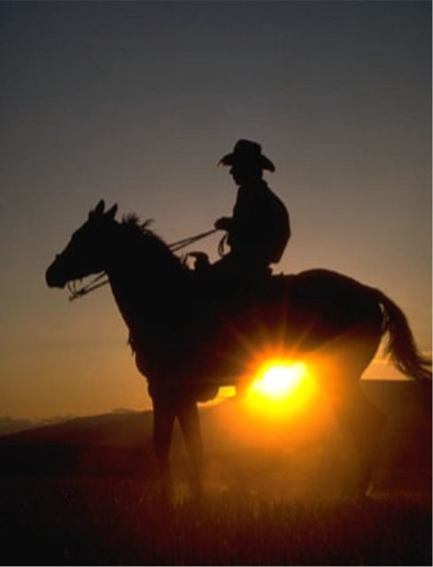 Wild West Horse Ride in the Sonoran Desert from Scottsdale