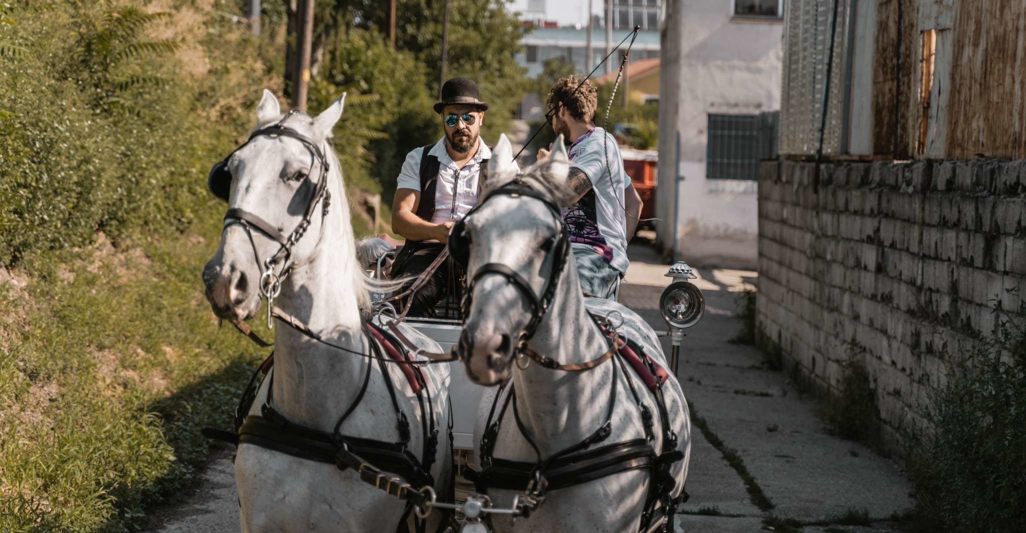 Vienna: Secrets of the Fiaker & Horse-Drawn Carriage Ride