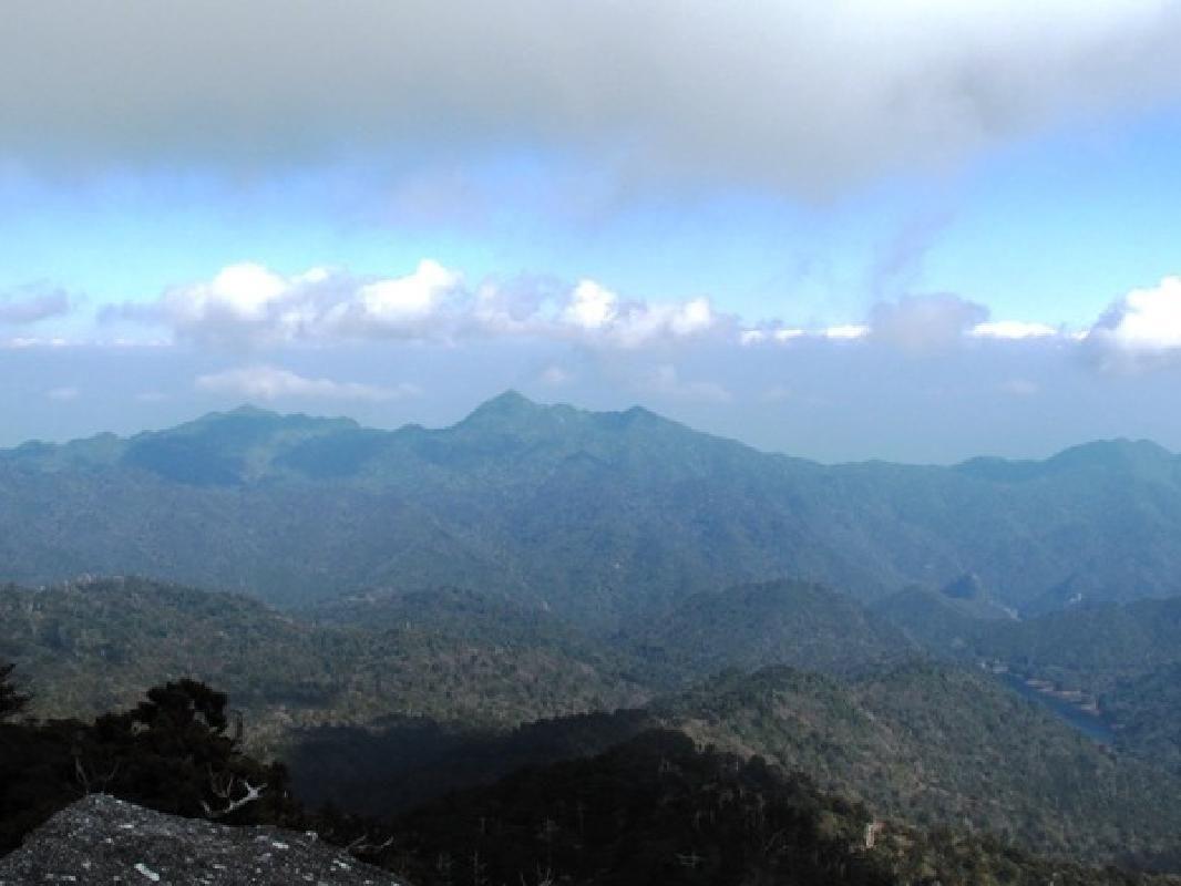 Tachudake Peak Full Day Private Hiking Tour in Yakushima (Transfers Included)