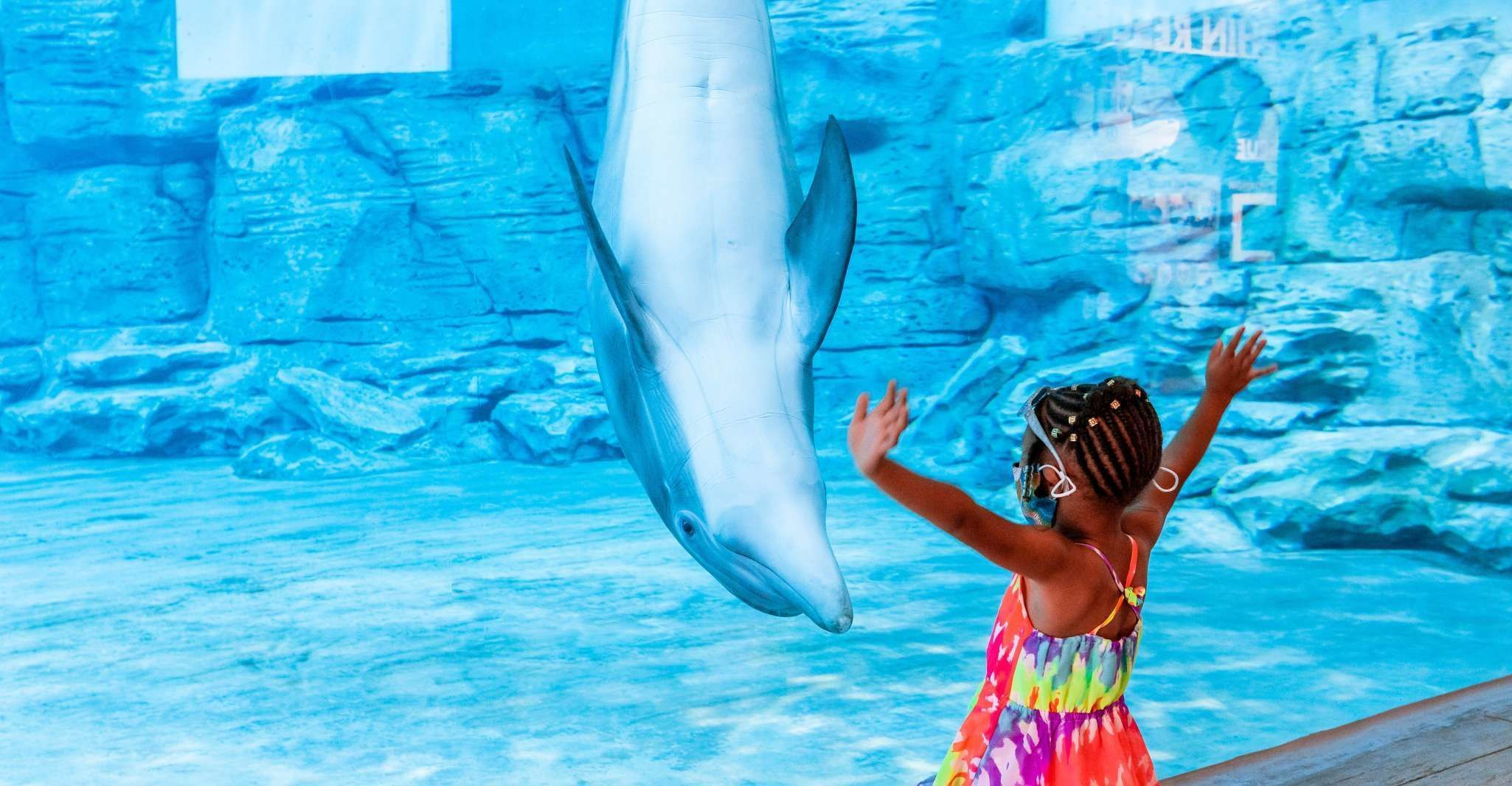 Clearwater: Eco-Certified Marine Aquarium General Admission