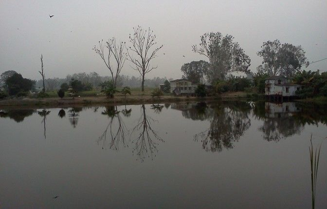 Wetlands: Nam Shang Wai and Wetland Park
