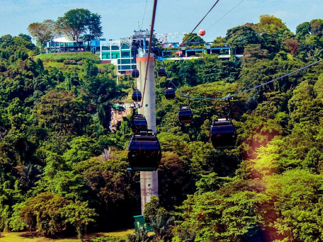 Sentosa Morning Tour with Cable Car Ride and Optional SEA Aquarium Ticket