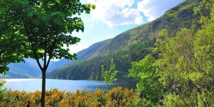 Day Tour from Dublin of Wicklow, Glendalough - Visit Powerscourt Gardens
