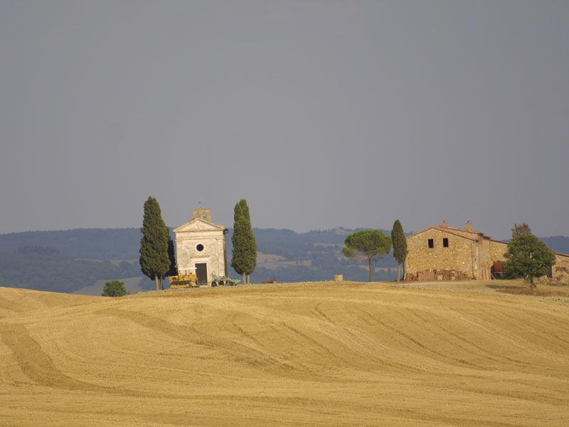 From Siena: San Gimignano, Montalcino & Wine Tasting