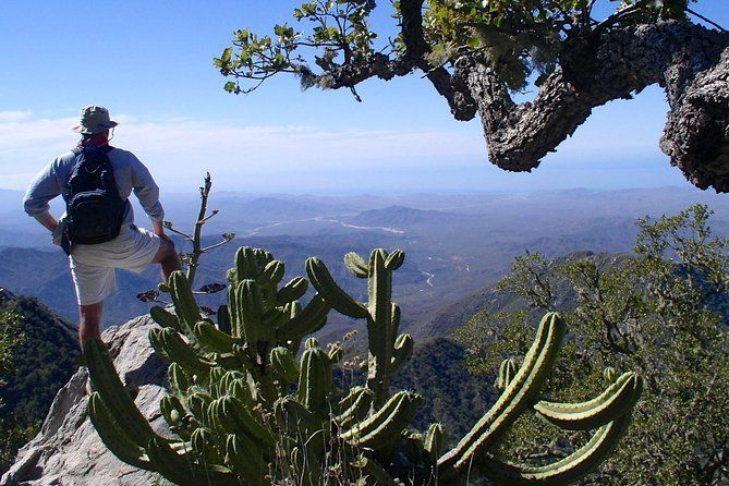 Sierra de la Laguna Biosphere Reserve Hike