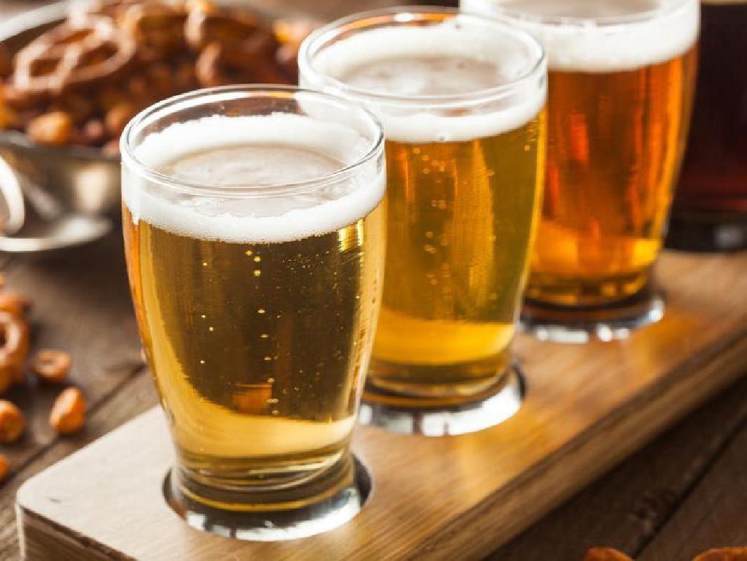 Guided Tour of Kirin Beer Factory in Nagoya
