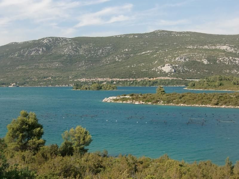 Peljesac wine tour (private trip)