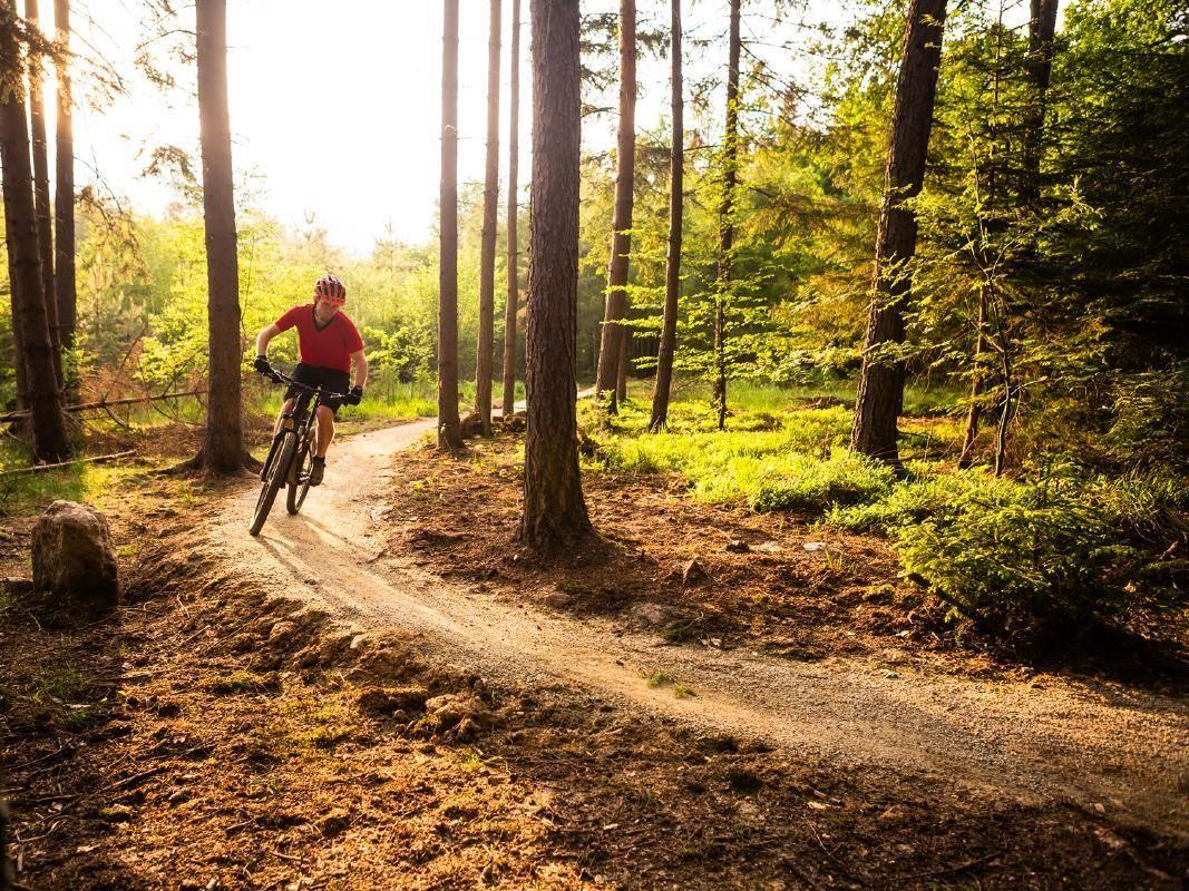 Mornington Peninsula Hiking and Off-Road Biking Adventure from Melbourne
