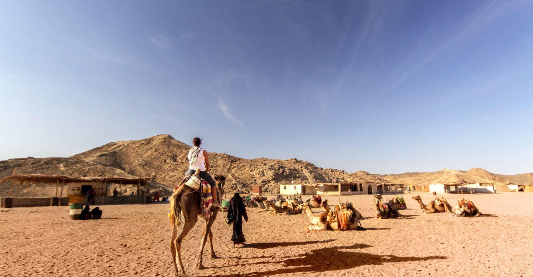 Hurghada: Sunset Desert Safari by Quad Runner & Camel Ride