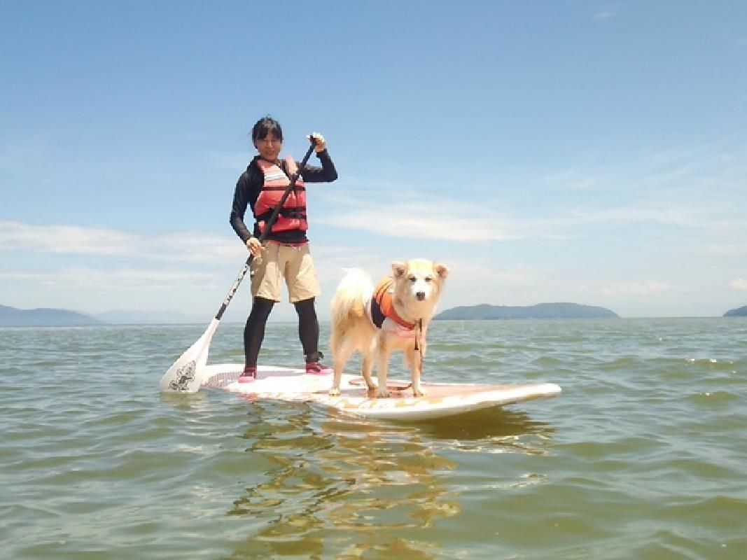 SUP Stand Up Paddleboard Lessons with Pro Instructors in Shiga