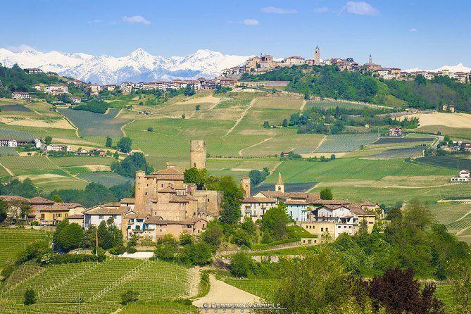 Barolo and Barbaresco wine tour