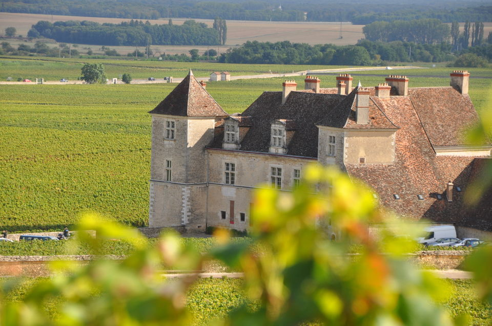 Burgundy Wines Full-Day Tasting Tour from Dijon