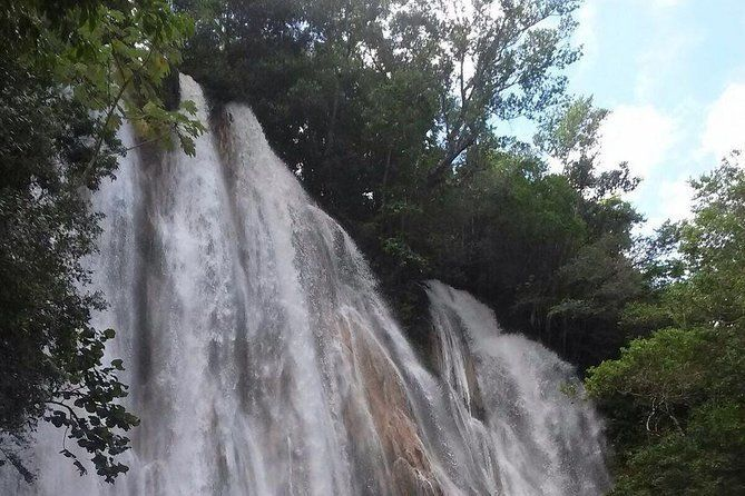 CASCADA LIMON SAMANA TROPICAL FOREST, It is an excursion for all people love the nature and also the adventure,
