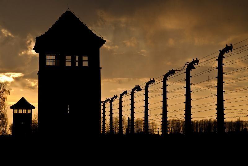Top Tours: Auschwitz & Wieliczka Salt Mine