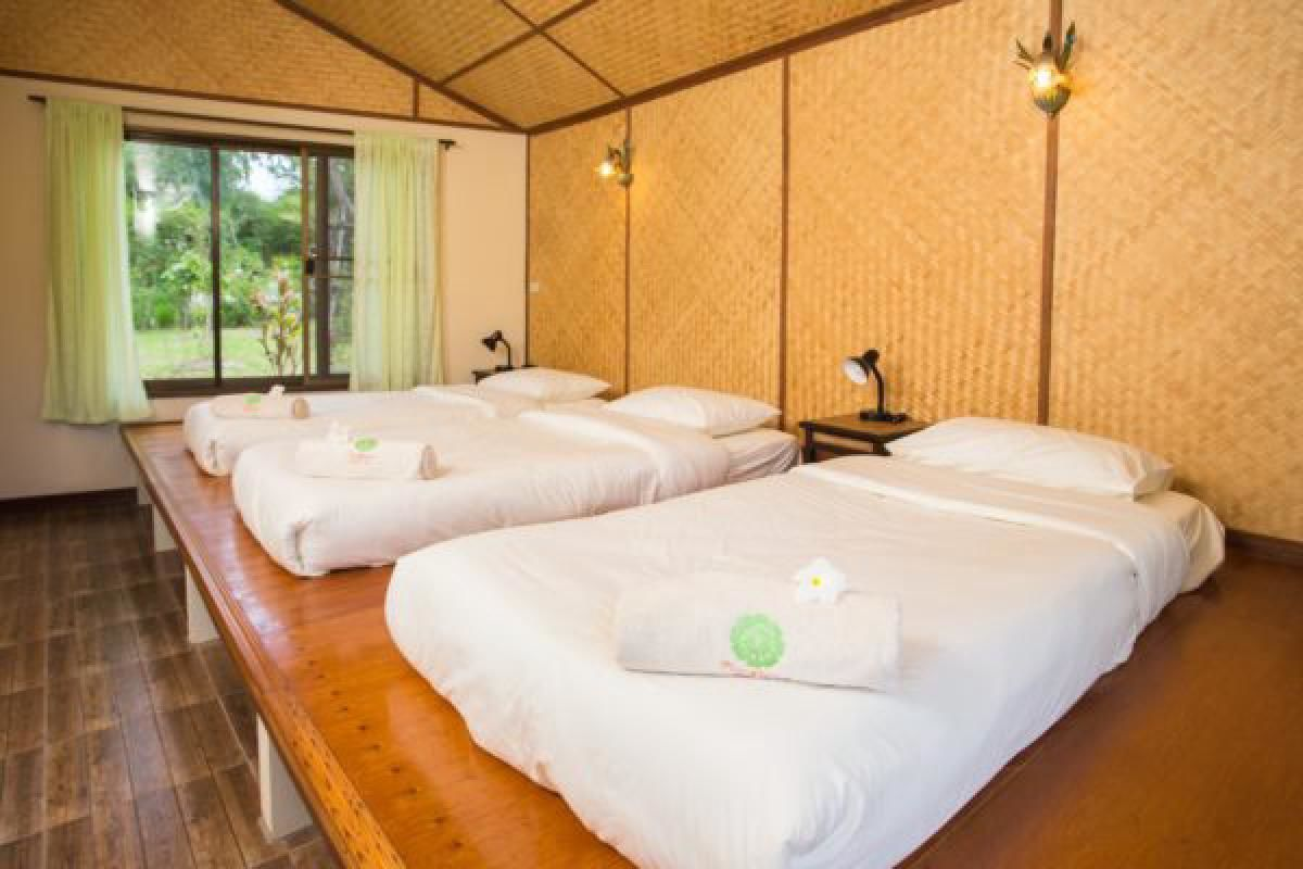 5 Night 6 Day Thai Yoga Retreat Package with Vegetarian Meals in Chiang Rai