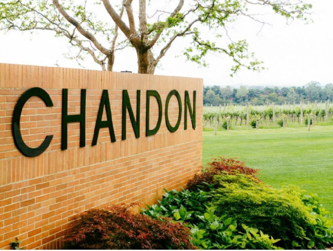 Yarra Valley Hot Air Balloon and Winery Tour with Visit to Domaine Chandon