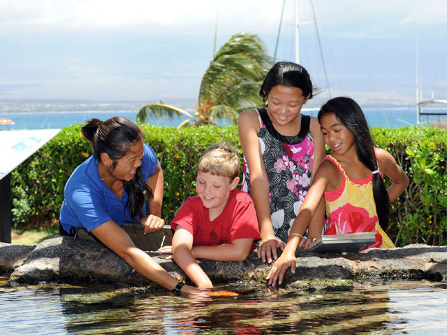 Hawaii: Maui Ocean Center Full-Day Entrance Ticket