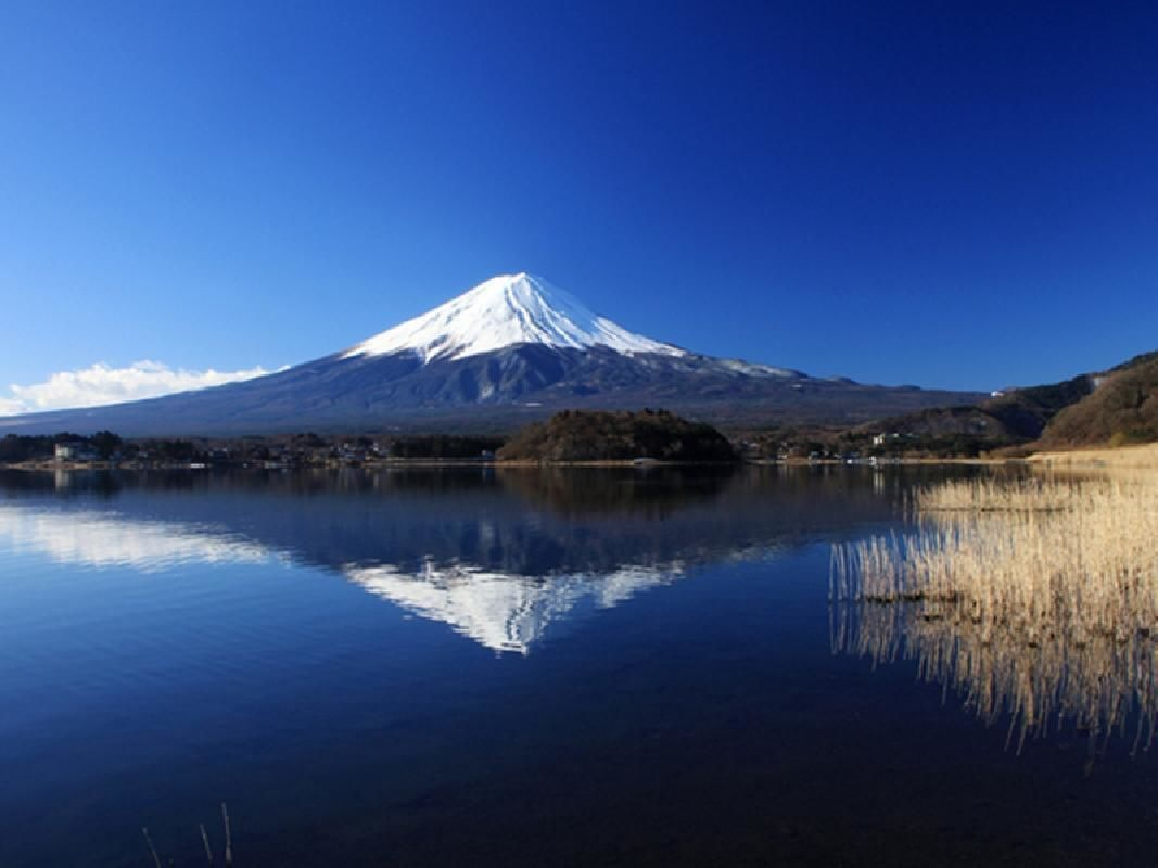 Reserved Express Bus Tickets for Mt.Fuji and Hida Takayama Route