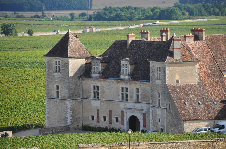 Dijon: Wines of Burgundy Half-Day Tour of Beaune