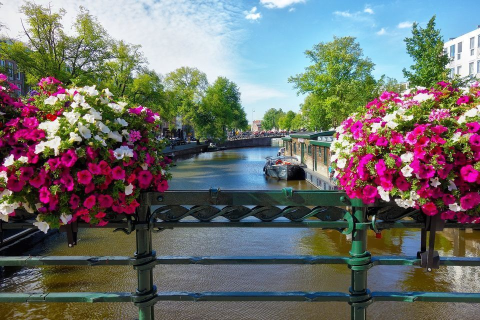Amsterdam: 3-Hour Private Airport Transit City Tour