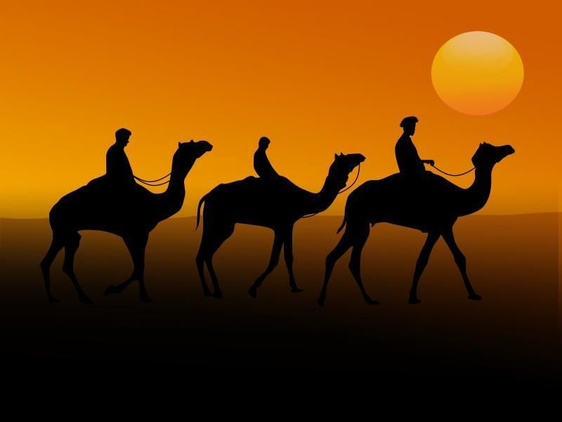 All-Inclusive Desert Safari, Abu Dhabi City Tour and Dhow Cruise Marina