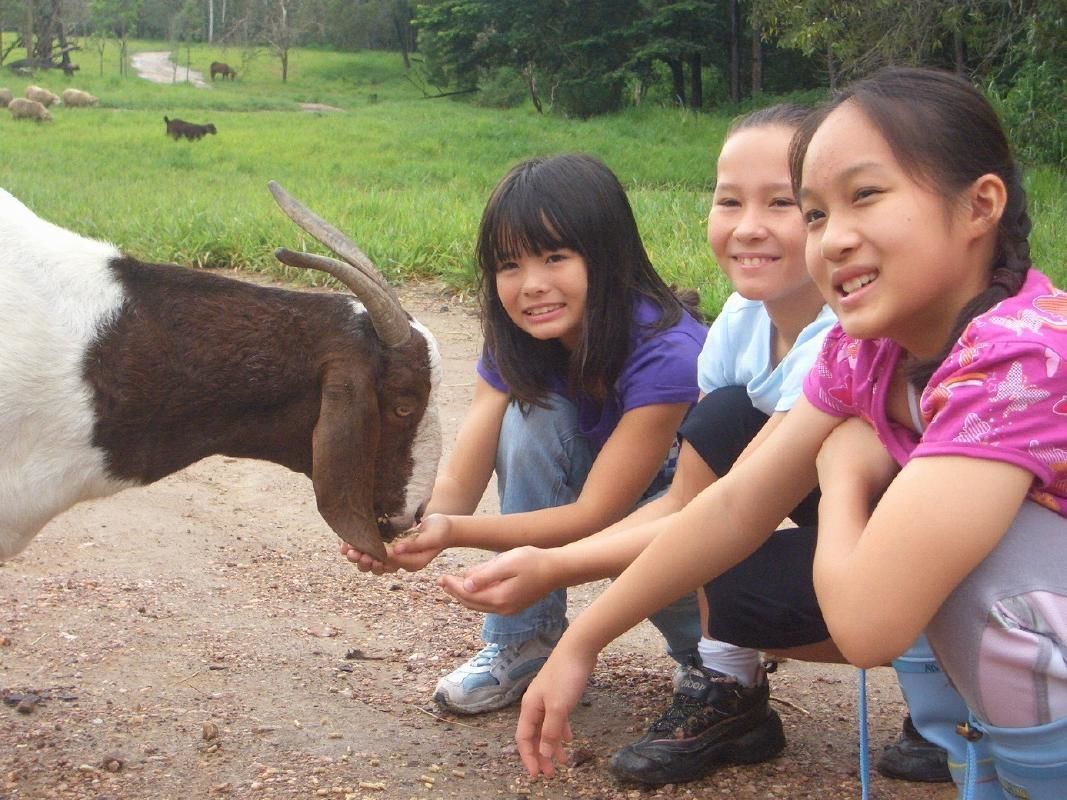 Horseback Riding and ATV Quad Bike Ride Combo Tour from Cairns