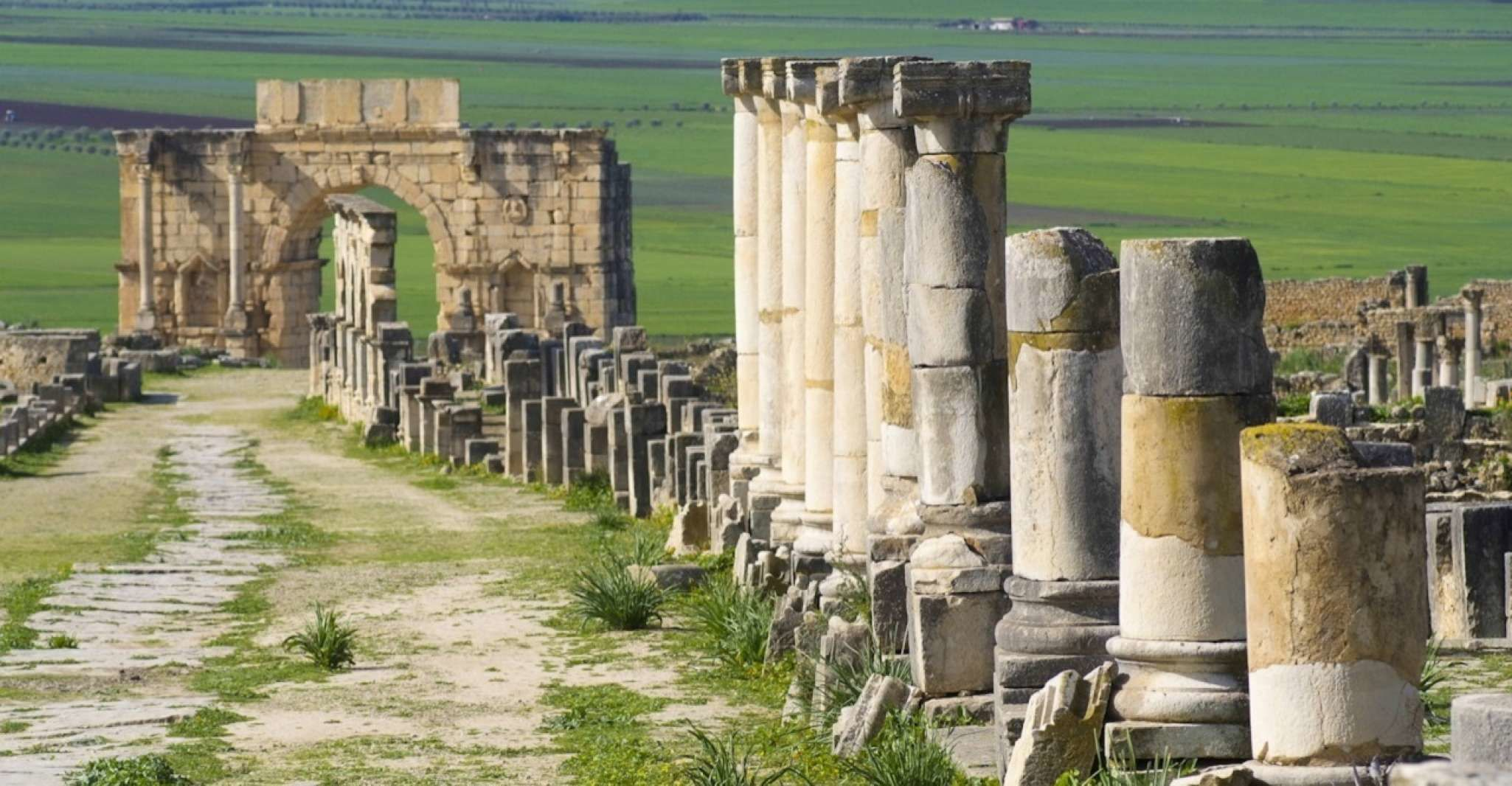 From Fez: Volubilis and Meknes Day Trip