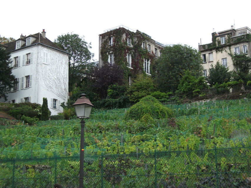 Paris: Montmartre Private Walking Tour