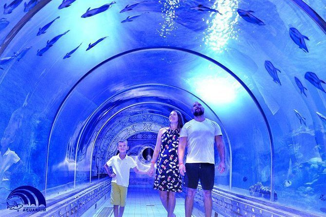 Skip the Line: Hurghada Grand Aquarium Entrance Ticket