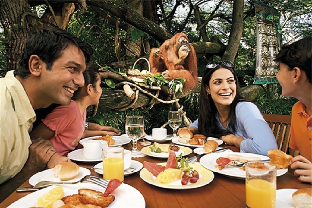 Private Morning Tour of Singapore Zoo with Transportation and Breakfast Option
