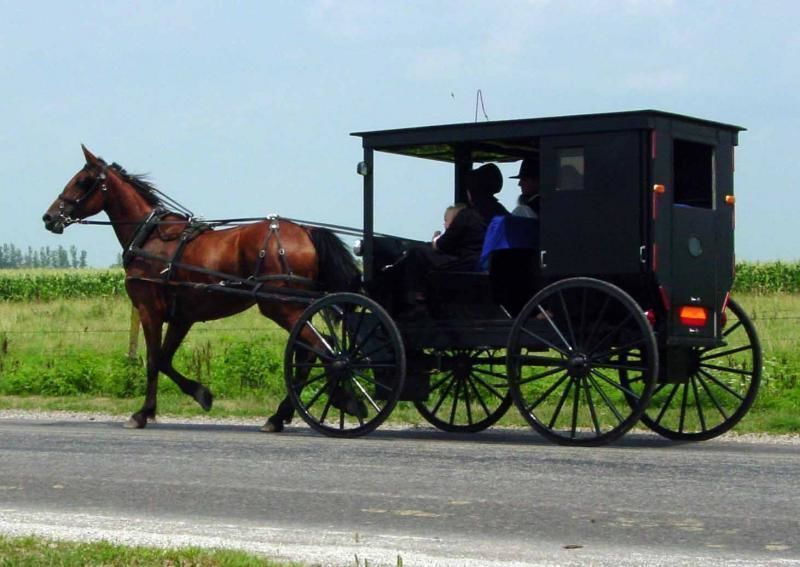 Explore Philadelphia and the Amish Country