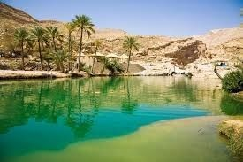 Day Trip from Muscat: Wahiba Sands & Wadi Bani Khalid