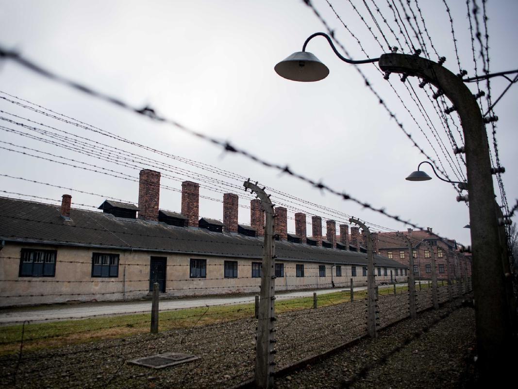 Auschwitz-Birkenau and Schindler's Factory Day Tour from Krakow