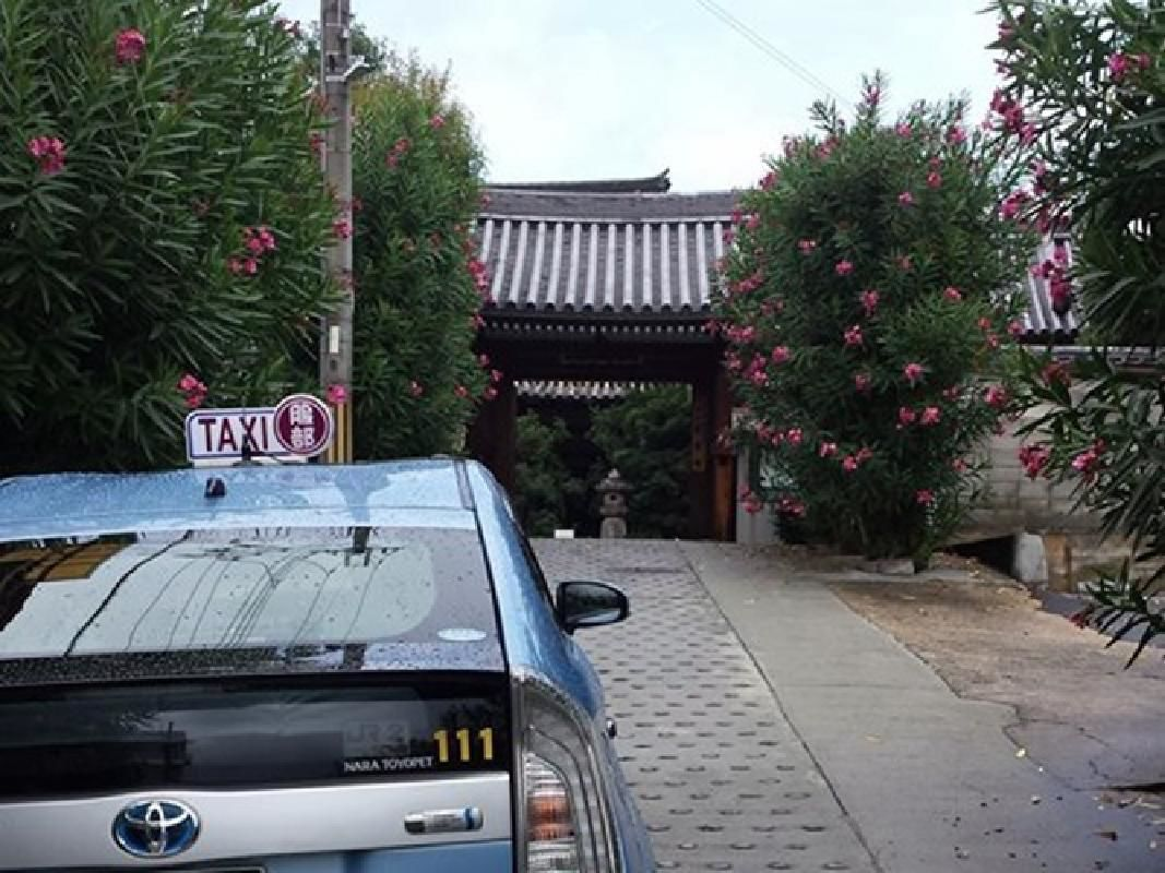 Five Hour Nishinokyou and Saboji Temple Sightseeing Taxi Tour from Nara
