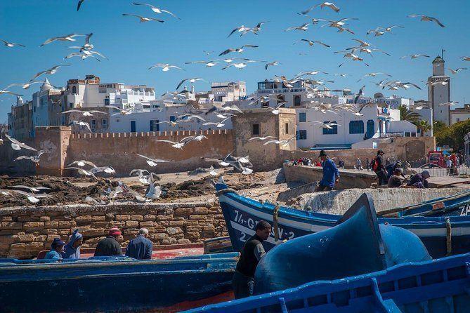 Full Day Private Trip - Marrakesh > Essaouira