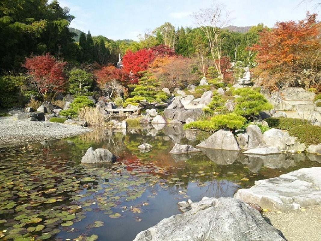 Joruriji, Gazenji, and Hannyaji Temple Sightseeing Taxi Tour from Nara